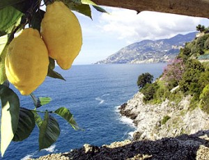 Picture of Sorrento